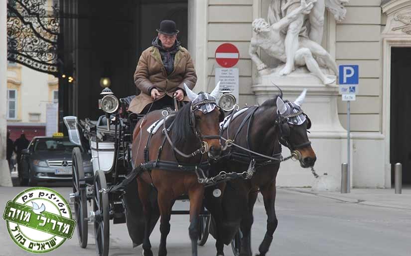 סיור בכרכרה רתומה לסוסים בעיר העתיקה של וינה